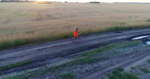 Muchacha en un vestido que monta una bicicleta a lo largo de los campos de trigo Tiroteo en un abejón Paisaje hermoso de una altu almacen de video