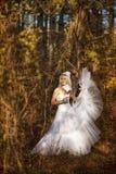 Muchacha en un vestido de boda Foto de archivo libre de regalías