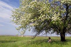 Muchacha en una sombra de un árbol floreciente Imágenes de archivo libres de regalías
