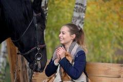 Muchacha en una tela escocesa con un caballo negro en el otoño debajo de un árbol de abedul en un banco Fotos de archivo libres de regalías