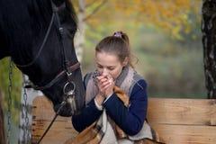 Muchacha en una tela escocesa con un caballo negro en el otoño debajo de un árbol de abedul en un banco Foto de archivo libre de regalías