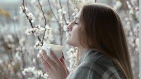 Muchacha en una tela escocesa que defiende en un balcón la ventana y té de consumición en un fondo de albaricoques florecientes almacen de video