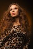 Muchacha en vestido del leopardo y zapatos negros en fondo marrón Imagen de archivo libre de regalías