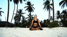 Muchacha en yoga del loto por la mañana en palmas en el amanecer almacen de video