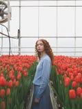 Muchacha entre los tulipanes rojos Imágenes de archivo libres de regalías