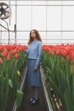 Muchacha entre los tulipanes rojos Foto de archivo