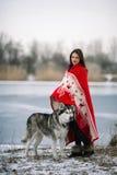 Muchacha envuelta en manta con el perro del malamute de Alaska Fotografía de archivo