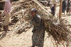 Muchacha etíope que lleva la carga pesada Fotos de archivo libres de regalías