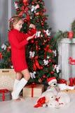 Muchacha feliz con dos golden retriever de los perritos en un fondo del árbol de navidad Fotografía de archivo