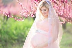 Muchacha feliz embarazada de la novia en jardín del melocotón del flor Foto de archivo
