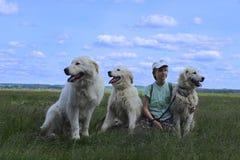 Muchacha feliz que juega con sus perros de animales domésticos Imagen de archivo