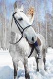 Muchacha hermosa con el caballo Fotografía de archivo