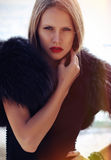 Muchacha hermosa con el pelo rubio Imagen de archivo libre de regalías