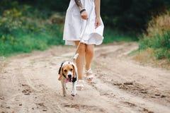 Muchacha hermosa con el perro fotografía de archivo