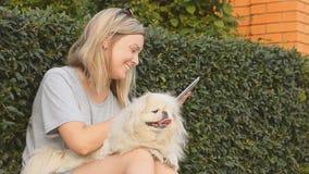 Muchacha hermosa con el perro usando la tableta al aire libre metrajes