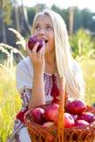Muchacha hermosa con una cesta de manzanas Imagen de archivo