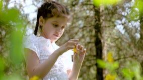 Muchacha hermosa de 9 años con las coletas en el bosque entre la naturaleza hermosa almacen de metraje de vídeo