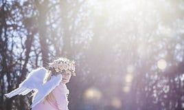Muchacha hermosa del ángel afuera Imagen de archivo
