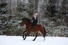 Muchacha hermosa del adolescente que galopa en caballo marrón Imágenes de archivo libres de regalías