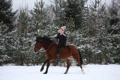 Muchacha hermosa del adolescente que galopa en caballo marrón Imagen de archivo libre de regalías
