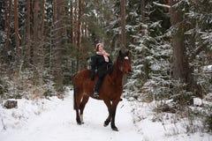 Muchacha hermosa del adolescente que monta el caballo marrón en el bosque Fotografía de archivo