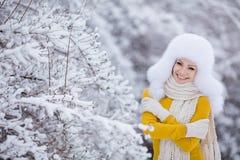 Muchacha hermosa del invierno de la nieve del Año Nuevo de la Navidad en la naturaleza blanca del sombrero Foto de archivo libre de regalías
