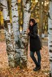 Muchacha hermosa en Autumn Leaves Park Hugging Tree de oro Relájese imagen de archivo libre de regalías
