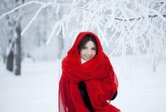 Muchacha hermosa en bosque del invierno en rojo Fotografía de archivo libre de regalías