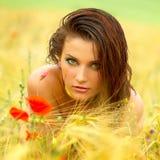 Muchacha hermosa en campo de trigo Fotografía de archivo libre de regalías
