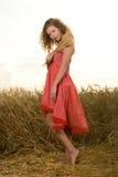 Muchacha hermosa en campo de trigo en puesta del sol Foto de archivo