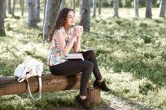 Muchacha hermosa en el bosque, la luz del sol brillante alrededor, la hierba verde y los árboles Imagenes de archivo