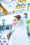 Muchacha hermosa en el invierno Imagenes de archivo