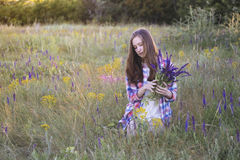 Muchacha hermosa en el prado Fotografía de archivo