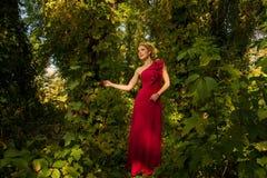Muchacha hermosa en el vestido rojo que presenta en un fondo de hojas Fotos de archivo