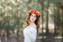 Muchacha hermosa en un bosque Foto de archivo libre de regalías