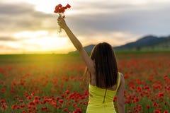 Muchacha hermosa en un campo de la amapola en la puesta del sol Imagenes de archivo