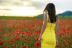 Muchacha hermosa en un campo de la amapola en la puesta del sol Imagen de archivo libre de regalías