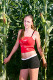 Muchacha hermosa en un campo de maíz Foto de archivo
