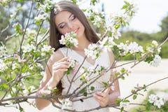Muchacha hermosa en un jardín del flor de la manzana Foto de archivo