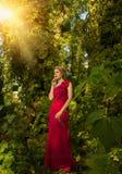 Muchacha hermosa en un vestido azul que presenta en bosque Foto de archivo