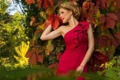 Muchacha hermosa en un vestido azul que presenta en bosque Fotografía de archivo