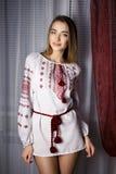 Muchacha hermosa en un vestido nacional de Ucrania fotografía de archivo