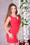 Muchacha hermosa en un vestido rojo atractivo fotografía de archivo