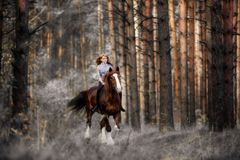 Muchacha hermosa galopes de un caballo que montan en el bosque misterioso en la madrugada foto de archivo