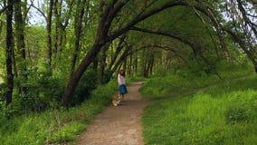 Muchacha hermosa joven con el perro del corgi que camina por el foothpath debajo de los árboles almacen de metraje de vídeo