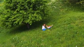 Muchacha hermosa joven con el perro del corgi que se sienta en una hierba debajo del ?rbol almacen de metraje de vídeo