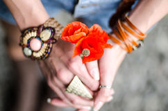 Muchacha hermosa joven con las flores rojas de la amapola Imagenes de archivo