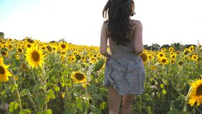 Muchacha hermosa que corre al sol en campo amarillo del girasol Mujer feliz que activa a través de prado en la puesta del sol Lib almacen de video