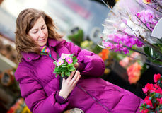 Muchacha hermosa que elige las flores en el mercado Fotografía de archivo