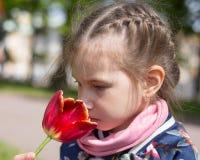 Muchacha hermosa que huele el tulipán rojo contra fondo florido de la primavera Imágenes de archivo libres de regalías